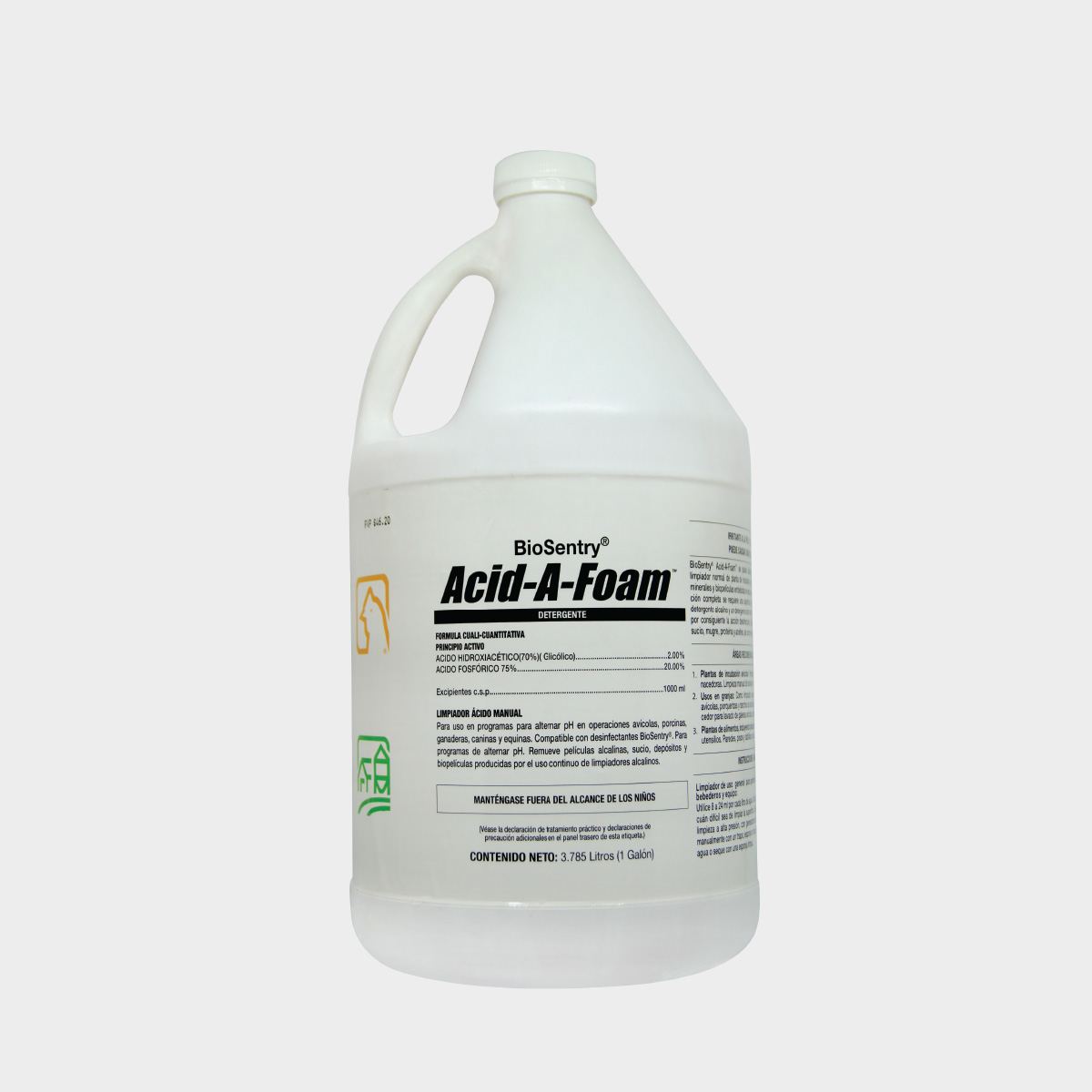 Acid-A-Foam 1Gal